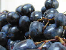 Blue grapes Royalty Free Stock Photos