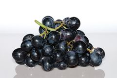 Blue grapes from the front Royalty Free Stock Image