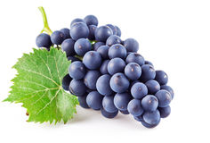 Blue grapes with green leaf. On white background Stock Photo