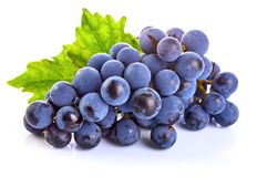 Blue grapes with green leaf healthy eating. stock image