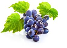 Blue grapes with green leaf healthy eating. royalty free stock photo