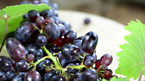 Blue Grapes (not loopable) Royalty Free Stock Photos