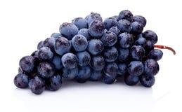 Blue grapes wet isolated on white background. Blue grapes wet isolated on a white background stock image