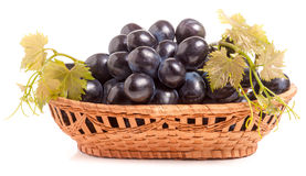 Blue grapes in a wicker basket isolated on white background Stock Photo