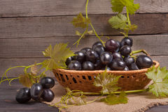 Blue grapes in a wicker basket on wooden table.  stock photo