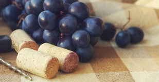 Blue grapes, wine traffic jams and corkscrew Royalty Free Stock Photo