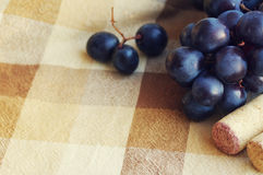 Blue grapes, wine traffic jams and corkscrew Stock Photos
