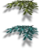 Blue and green Christmas tree branches on an isolated white background with the shadow in perspective. illustration Stock Photos