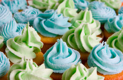 Blue and green cupcakes Royalty Free Stock Photos