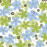Blue and green daisies on white background stock images