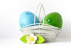 Blue and green Easter eggs in a basket with white flower Stock Photos