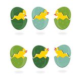 Blue green Easter eggs with chickens card Royalty Free Stock Image