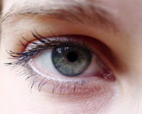 Blue green eye. Photo of a woman green  eye Royalty Free Stock Images
