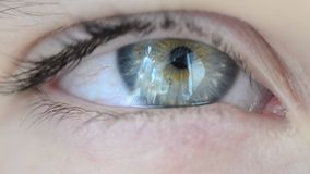 Blue green eye stock footage