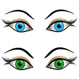 Blue and green female eyes Stock Photos