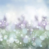 Blue  and green  Festive background Stock Images