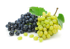Blue and green grape fruits isolated Royalty Free Stock Photos