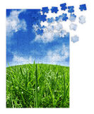 Blue & green grass puzzle. Blue and green grass puzzle Royalty Free Stock Image