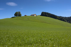 House on green grassy hill, blue sky - Switzerland Royalty Free Stock Photo