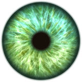 Blue green iris eye. Blue green round iris eye Royalty Free Stock Photos