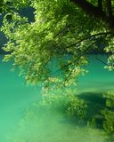 Blue and green lake stock image