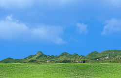Blue and green landscape Stock Photos