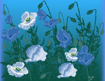 Blue and green poppy flowers illustration Stock Images