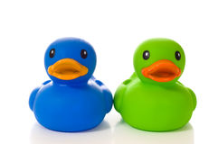 Blue and Green Rubber Ducks