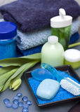 Blue and green spa. Bathroom decoration with blue and green color dominating stock photos