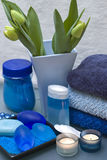 Blue and green spa. Bathroom decoration with blue and green color dominating stock image