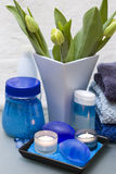 Blue and green spa. Bathroom decoration with blue and green color dominating royalty free stock images