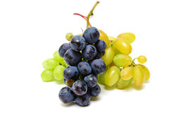 Blue and green wet grapes bunch isolated on white background Royalty Free Stock Photo