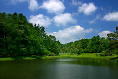 Blue, Green and White. Trees, pond and sky Royalty Free Stock Photography