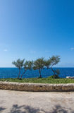 Blue Grotto park Stock Images