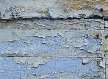 Blue grunge planks Stock Image