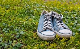 Blue gym shoes on a grass. Blue gym shoes on a green grass near to a strawberry stock image