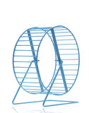 Blue hamster wheel Royalty Free Stock Photography