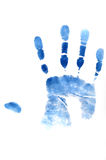 Blue hand print. On white background, close up Royalty Free Stock Image