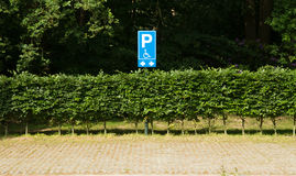 Blue handicapped parking sign Royalty Free Stock Photos