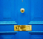 blue handle in london antique brown door  rusty  brass nail and Royalty Free Stock Photo