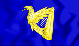 Blue Harp Flag of Ireland. Stock Image