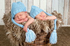 Blue hat twin babies Royalty Free Stock Photo