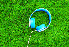Blue headphones lie on the green textured background Stock Photography