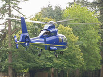 Blue Helicopter. A blue helicopter taking off royalty free stock images