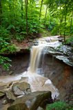 Blue Hen Creek Falls Stock Photos