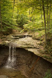 Blue Hen Falls Vertical From Above Royalty Free Stock Photography