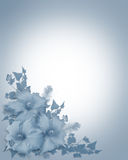 Blue Hibiscus Floral border Royalty Free Stock Image