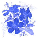 Blue Hibiscus flowers. And watercolor background Royalty Free Stock Photos
