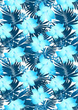 Blue hibiscus flowers. Vector illustration of a tropical floral pattern Royalty Free Stock Image