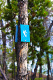 A blue hiking trail marker on a tree Stock Photography
